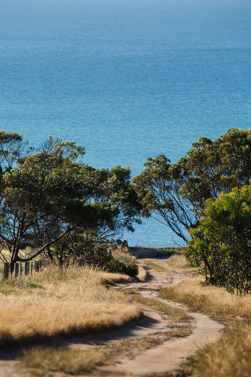 PortArlington-WilliamWattPhotography-16